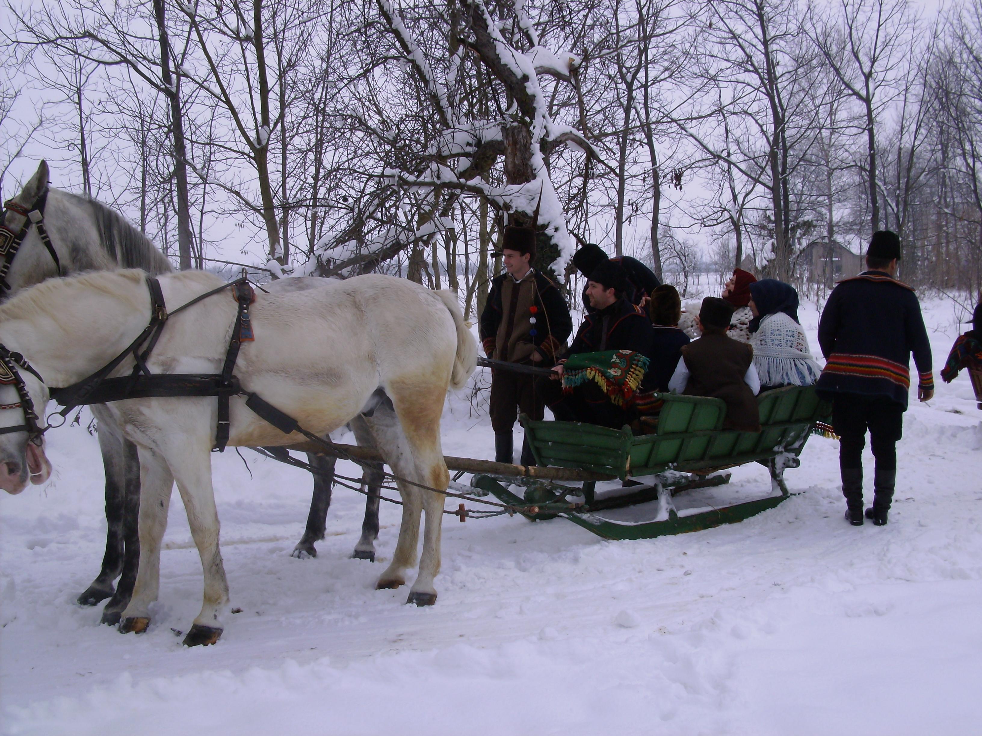 kroaten zu pferd